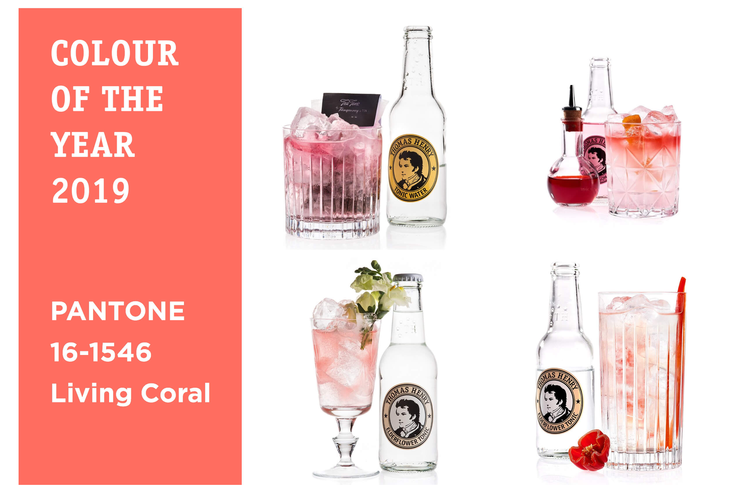 Thomas Henry Drink in der Farbe des Jahres Living Coral