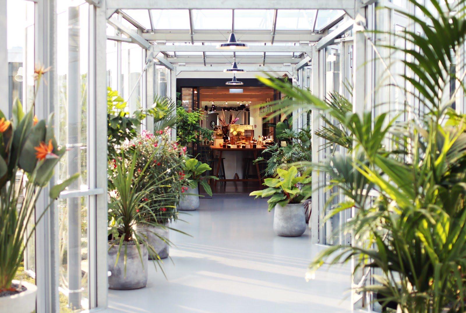 Gewächsaus im Zoku Hotel in Amsterdam