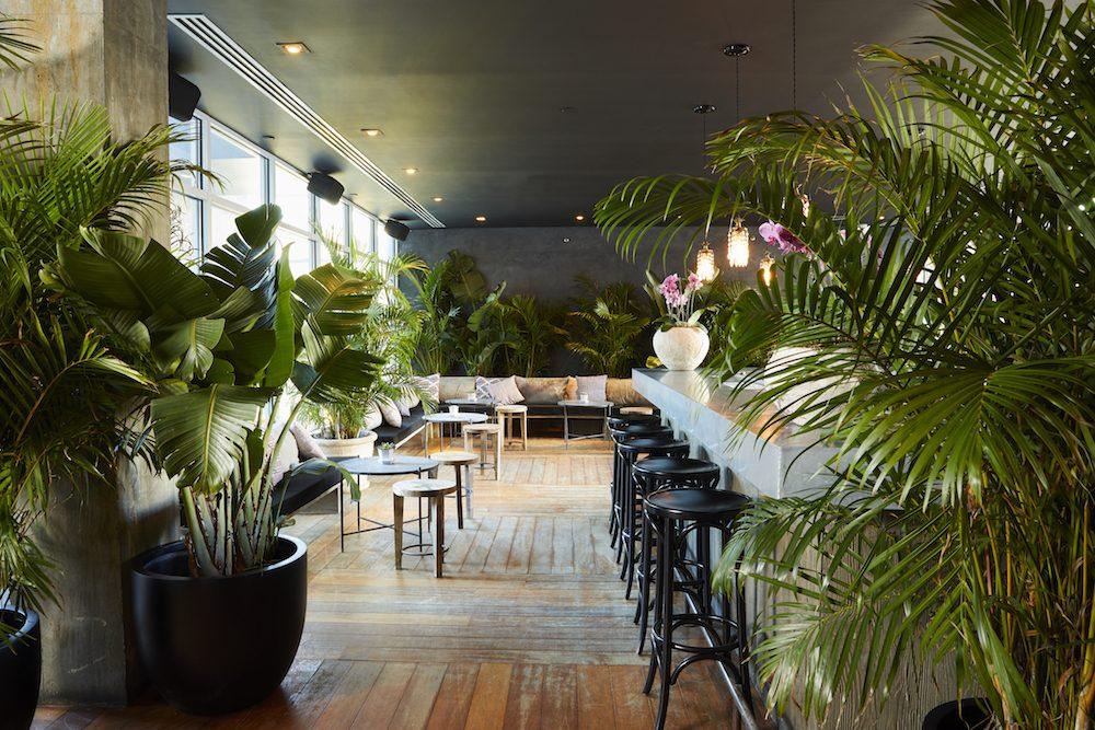 Einblick in die Gitano Bar in New York