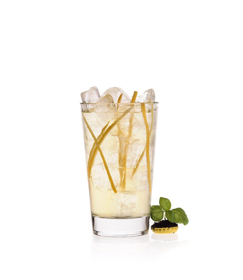 Der Gin Atomic mit Thomas Henry Tonic Water