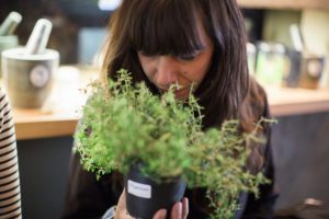 Der Kräuterduft im Herbal Workshop Hamburg